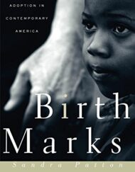 Birthmarks-Transracial-Adoption-in-Contemporary-America-0